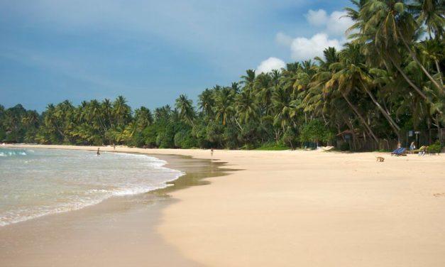 Panorama of Mirissa Beach, Sri Lanka