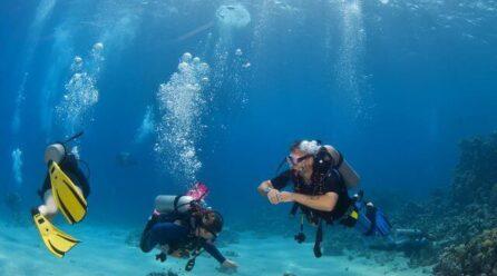Key Elements to a Successful Scuba Diving Adventure