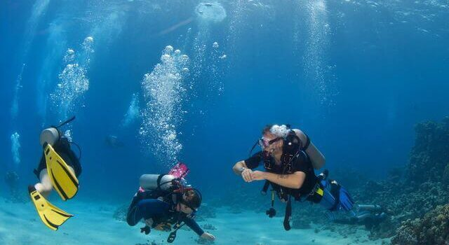 Key Elements to a Successful Scuba Diving Adventure